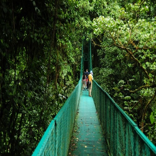 man crossing hanging bridge